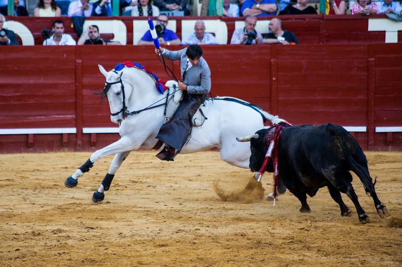 Bullfighting H32.jpg