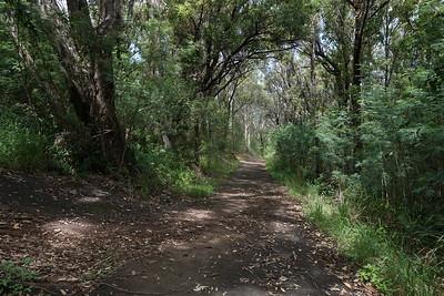 Kapalua Village Walking Trails