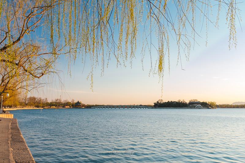 BeijingMarch2019-57.jpg