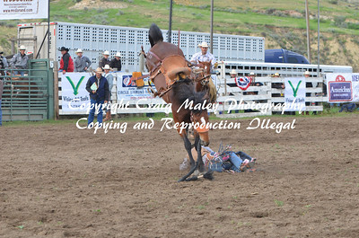 06-06-14 Saddle Bronc