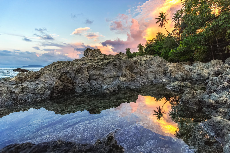 Tropical Tidepool Reflection