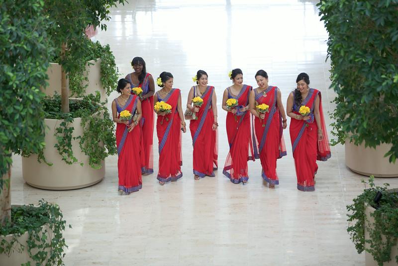 Le Cape Weddings - Indian Wedding - Day 4 - Megan and Karthik First Look 6.jpg
