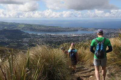 Dunedin Area Trips