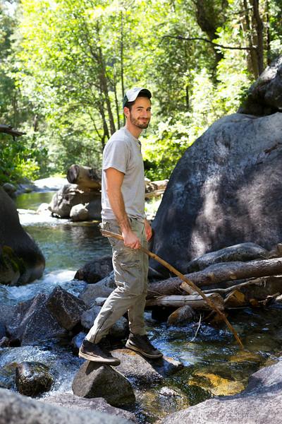 Sequoia_0427.jpg