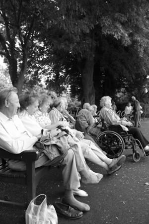 Folk in Abbey Gardens, Bury St Edmunds