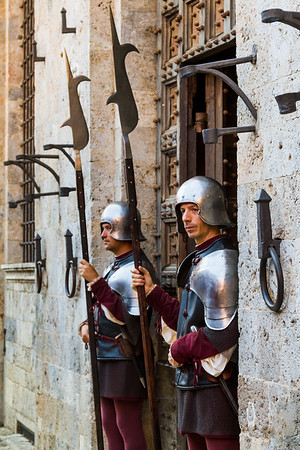 Guards dressed in medieval armor