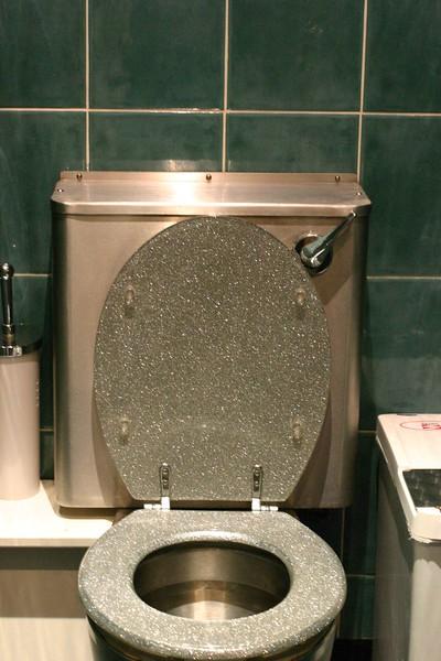 sparkly-toilet_2046242543_o.jpg