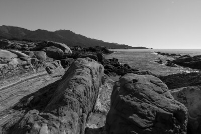 2013 Birthdays Pt Lobos B&W