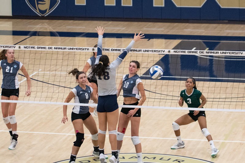 HPU Volleyball-92086.jpg