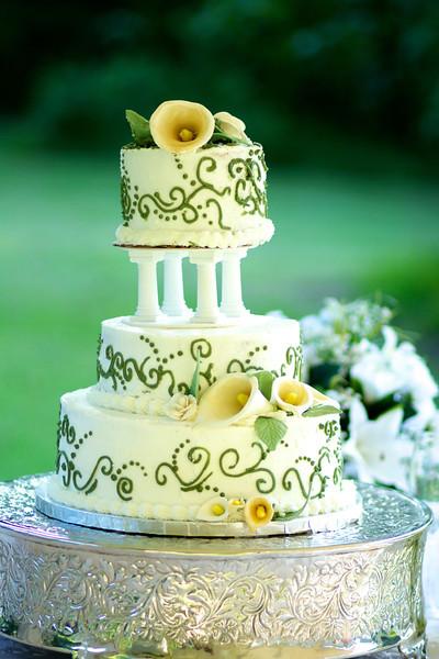 Michael & Laura Bellard Wedding
