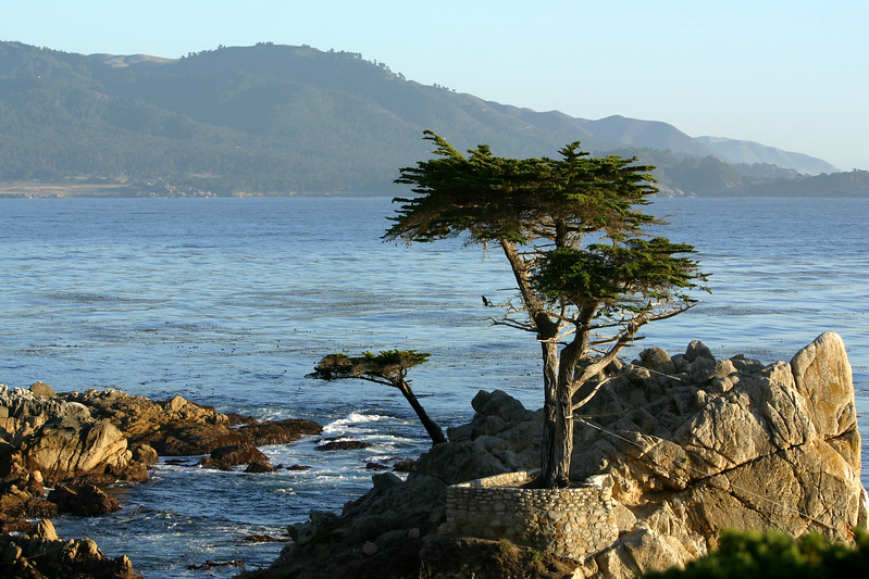 2003 10/14: Monterey and Carmel By The Sea