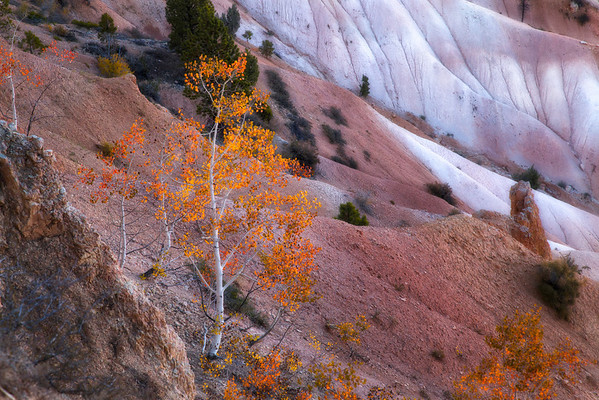 Bryce Canyon - Salt Lake City