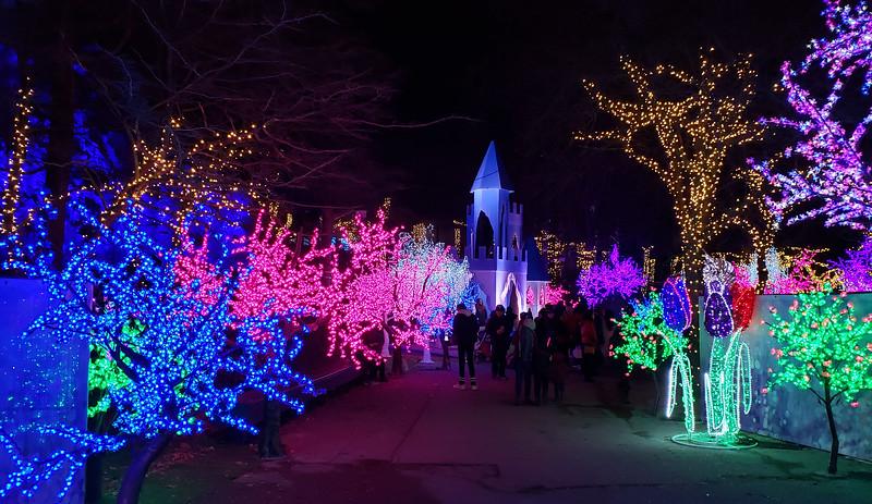 Toronto-Aurora-Winter-Festival-32.jpg