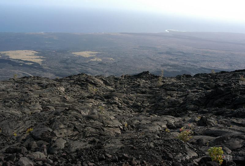 255- 20080412- Hawaii 15- Volcano Nat'l Park DSC_3094.jpg