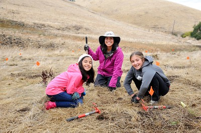 Experiential environmental service project work
