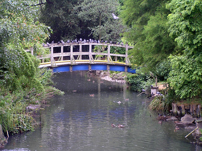 Regent's Park 2006
