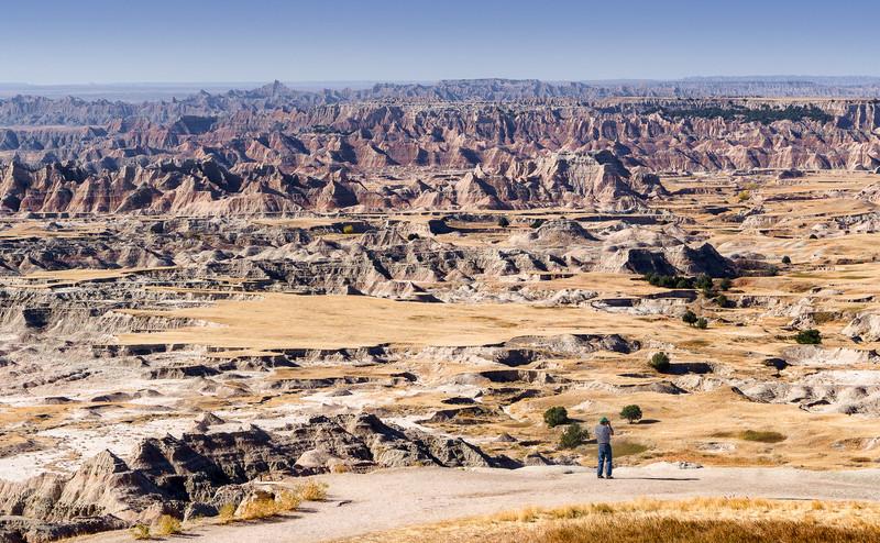Lone Observer Badlands National Park South Dakota