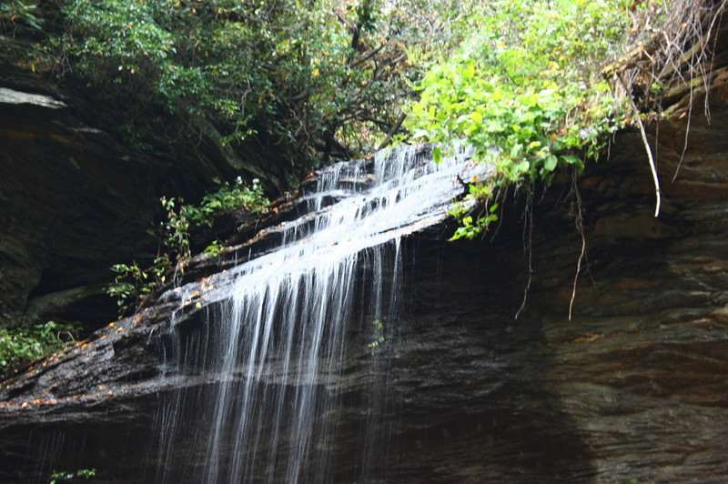 Pisgah Forest 9-30-12 82.jpg