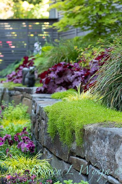 The Chartreuse Garden_1007.jpg