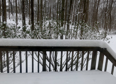 2014-03-17 St. Patrick's Day Snow, Ellicott City MD!