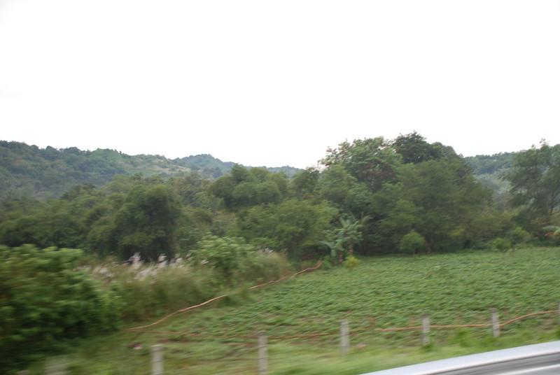 Pictures 08 10-07-08 thru 11-14-08 035.JPG