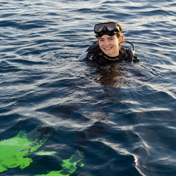 Scuba diver in the sea, Turneffe Atoll, Belize Barrier Reef, Belize