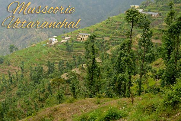 India, Uttaranchal, Mussoorie