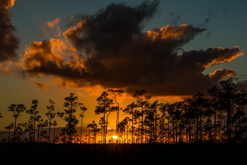 Sunset at the Everglades