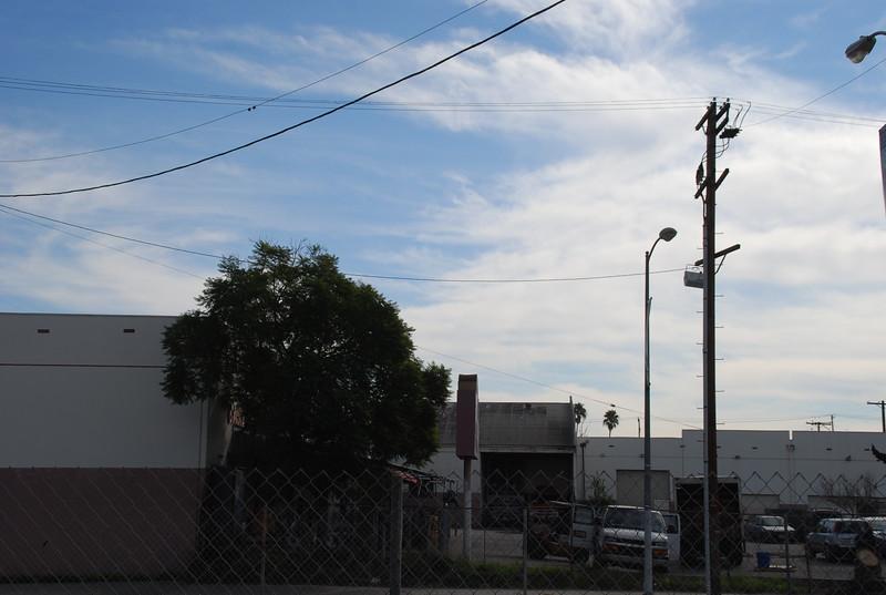 2011-01-26_LASHP_Park_Skyline_044.JPG