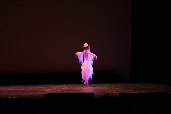 The Snowy Owl Ballet 3