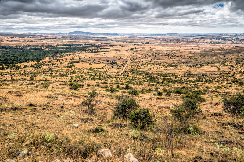 Landscape, Almarza, Soria, Spain