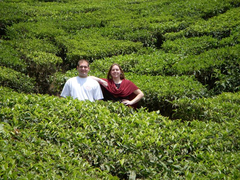 Jon and Cheryl on a tea plantation in Munnar