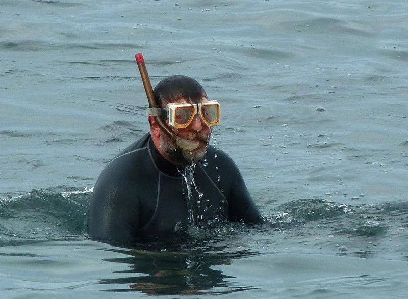 Harley doing some snorkeling at Kahaluu Beach Park