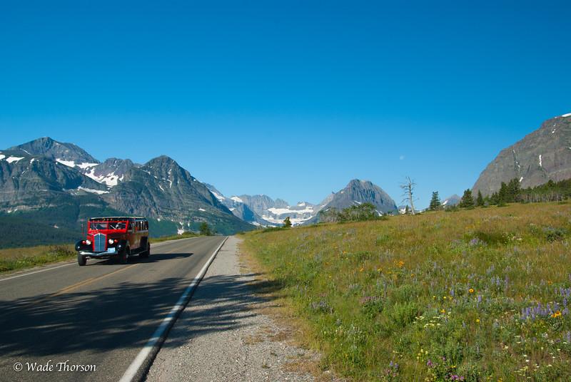 Glacier, Wateron, Banff32.jpg