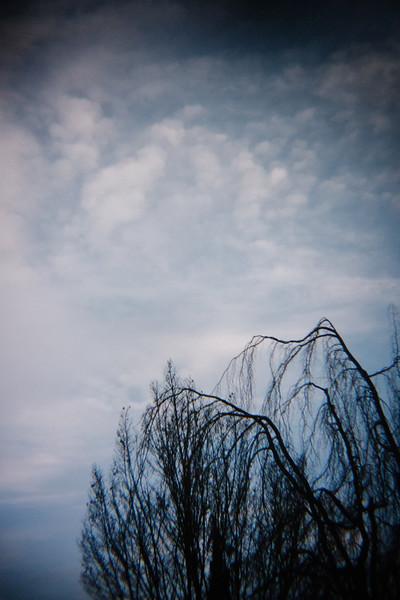 Holga_Lens-1060228.jpg