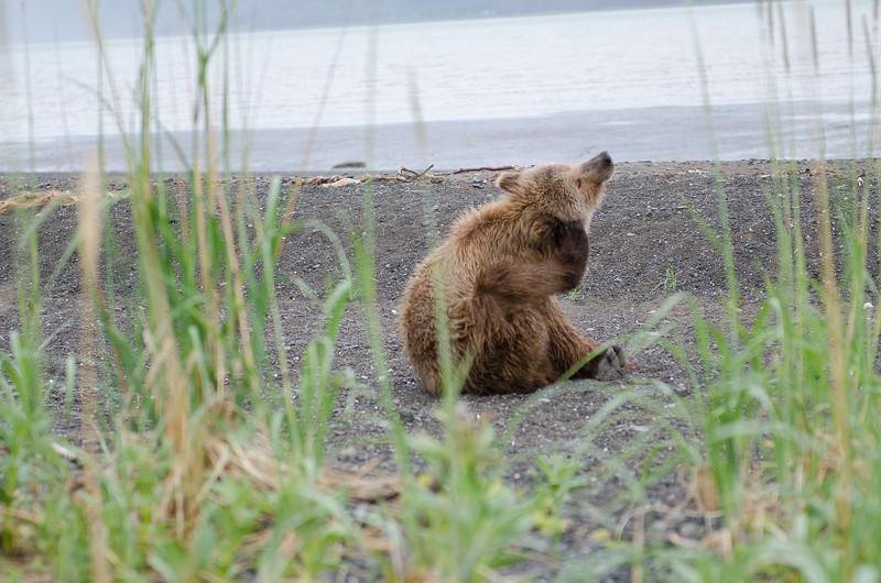 Alaska-8301.jpg