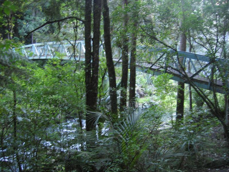 bridge_1.jpg