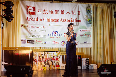2015 ACA Fundraising Gala