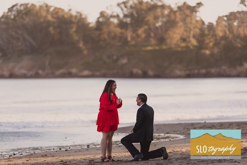 Alex+Aubrey ~ San Simeon Proposal