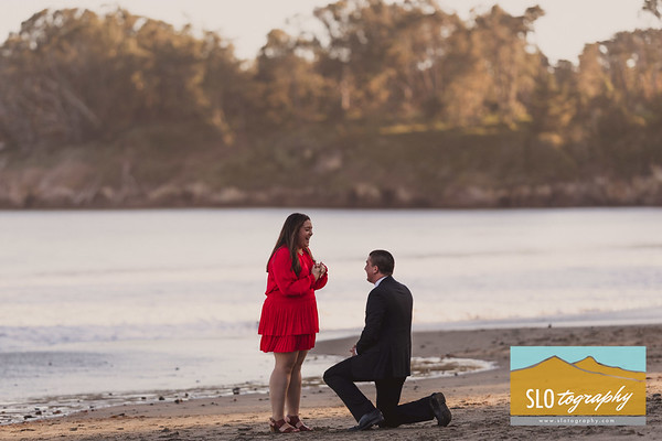 Alex+Aubrey ~ San Simeon Proposal