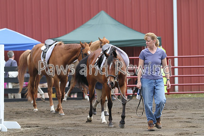 Black Ridge Farm Horse Show, June: Candids & Indoor Classes