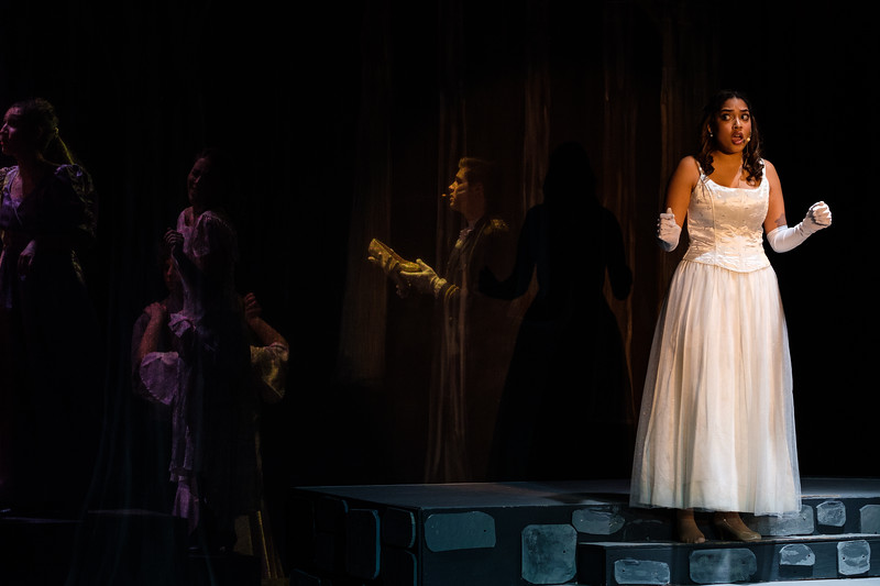 2018-03 Into the Woods Performance 0424.jpg