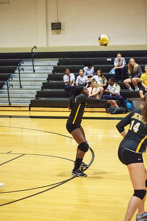Volleyball 9-19