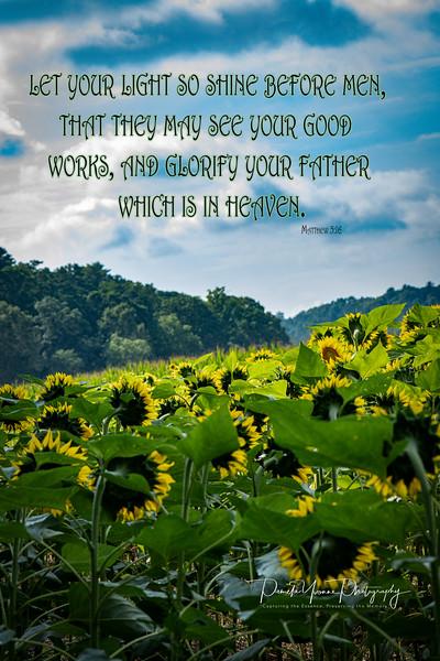Matthew 5-16.jpg