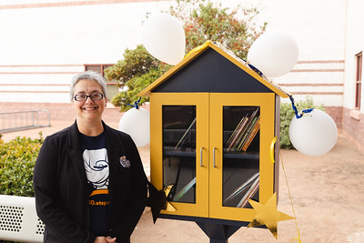 Lujan Chavez Little Free Library