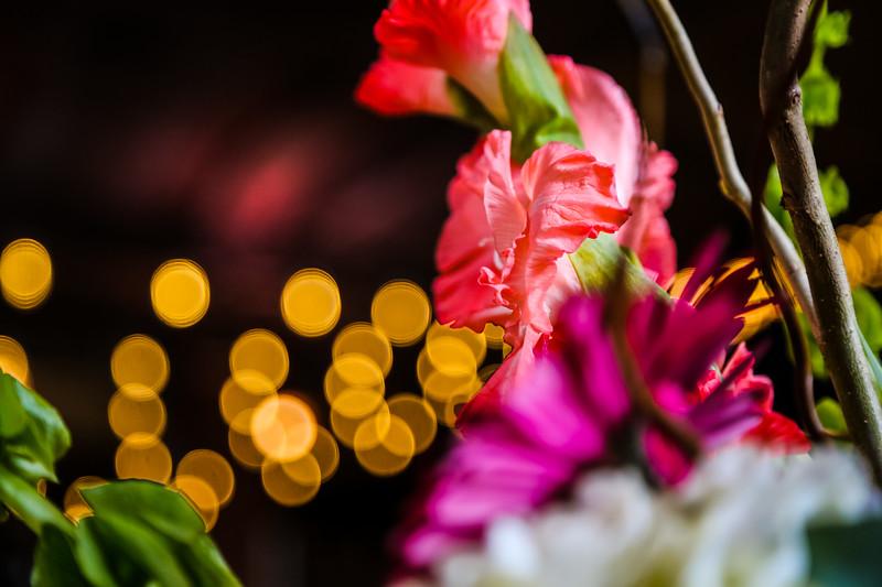 gloss photography studios ©-33-3.jpg
