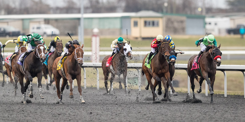 Blended Citizen (Proud Citizen) wins the Jeff Ruby Steaks (G3) at Turfway Park on 3.17.2018. Kyle Frey up, Doug O'Neill trainer, Greg Hall and SayJay Racing owners.