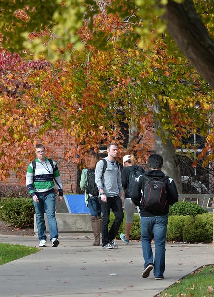 campus3167.jpg