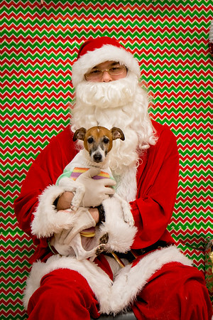 DogsWithSanta2017