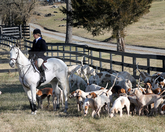 Blue Ridge Hunt meet at Bartley 1-1-2015